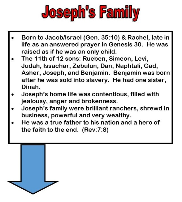 joseph infographic vertical presentation in jpeg 2
